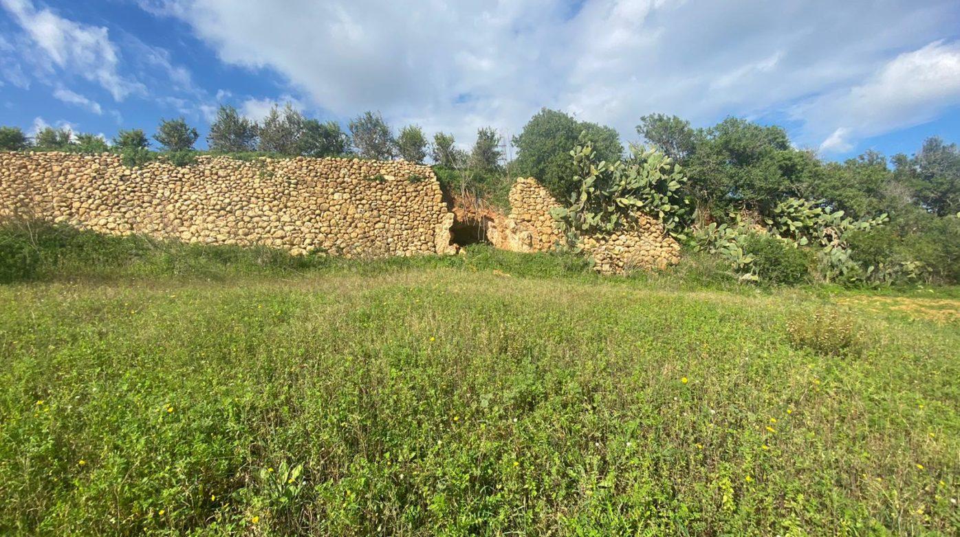 Wied Bingemma - Agricultural Land